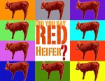 The Red Heifer - Rico Cortes
